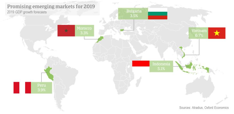 Les marchés prometteurs pour 2019